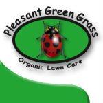 Pleasant Green Grass